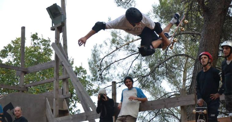 ALK13 Skate